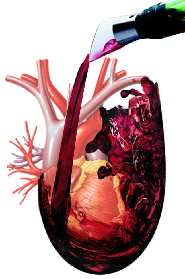 Tomar una o dos copas de vino tinto ayuda a proteger el